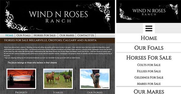 wind-roses-ranch-calgary-web-design-full
